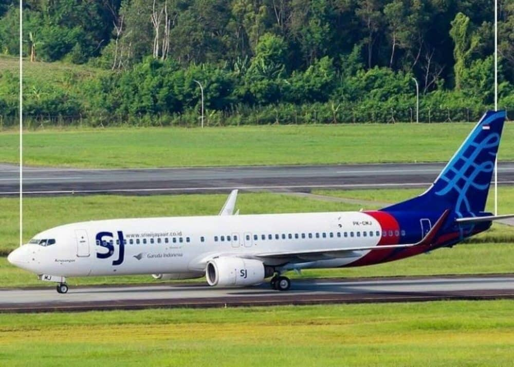 How Did Sriwijaya Air SJ 182 Missing Yesterday's Specs?