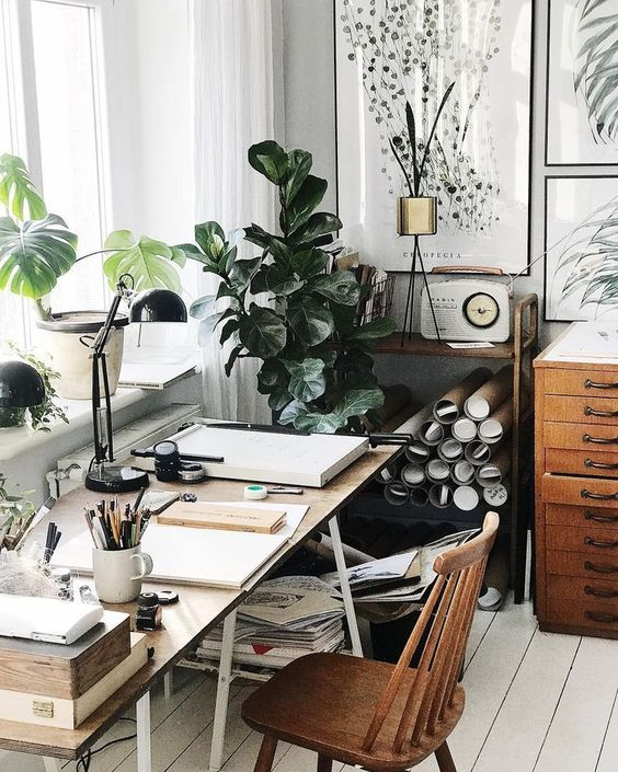 houseplants in the workspace